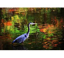 Magic Waters Photographic Print