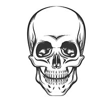 The Skull by devaleta