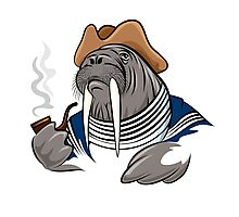 Smoking Walrus Photographic Print