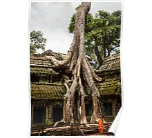 Overgrown Temple: Monk at Angkor Thom, Cambodia Poster