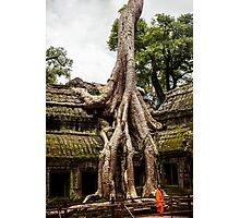 Overgrown Temple: Monk at Angkor Thom, Cambodia Photographic Print