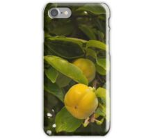 Persimmon perfection iPhone Case/Skin