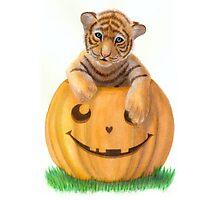 Halloween Tiger Cub  Photographic Print