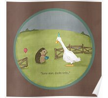 Ducks only Poster