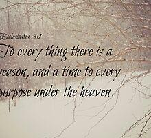Ecclesiastes 3 Season by Kimberose