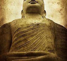 Zen by Andrew Paranavitana