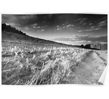 Long Shadows on Dale Spinney BW Poster