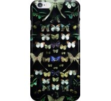 Butterfly collection iPhone Case/Skin