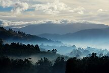 Huonvalley South Tasmania by Imi Koetz