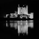 Eilean Donan after dark by hans p olsen
