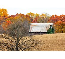 Autumn Barn and Tree in Cornfiled Photographic Print