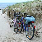 Beachycles by Arie Koene