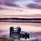 Lilac dawn by LadyFi