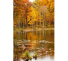 Finster Lake - Golden Pond Photographic Print