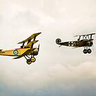 Triplanes by vivsworld