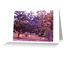 Sentinals of Peace Greeting Card