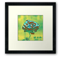 Mint and Green Rose Framed Print