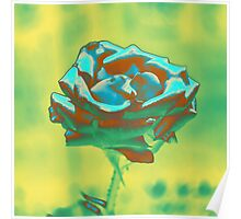 Mint and Green Rose Poster