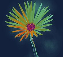 Blue Daisy Flower by Nhan Ngo
