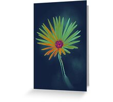 Blue Daisy Flower Greeting Card