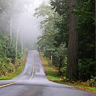 Island Road in October by TerrillWelch
