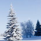 Christmas scenes by Halobrianna