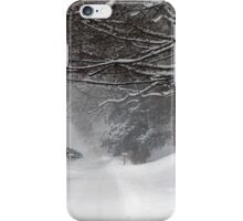 Snowy Road iPhone Case/Skin