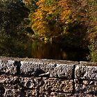 Oldmills Bridge in Autumn by JASPERIMAGE
