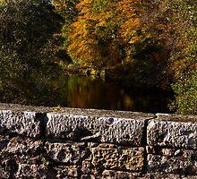 Oldmills Bridge in Autumn by JASPERIMAGE