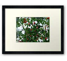 Jolly Holly Framed Print