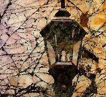 Beacon by Liz Ruest