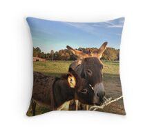Friendly Donkeys Throw Pillow