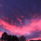 This Evening's Sunset by TrendleEllwood