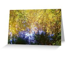 Yellow fall leaves on a tree Greeting Card
