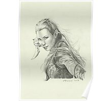 Daughter of Mirkwood Poster