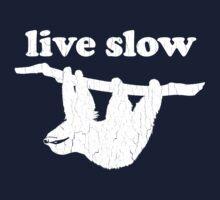 Cute Sloth - Live Slow (Vintage Distressed Design) Kids Clothes