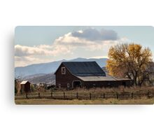 Mr. Jones had a barn ... Canvas Print