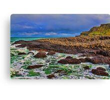Northern Ireland. Giant's Causeway. Canvas Print
