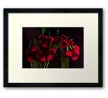 In Honour of Those Who have Served Framed Print
