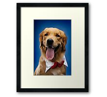 Golden Retriever art photo print Framed Print