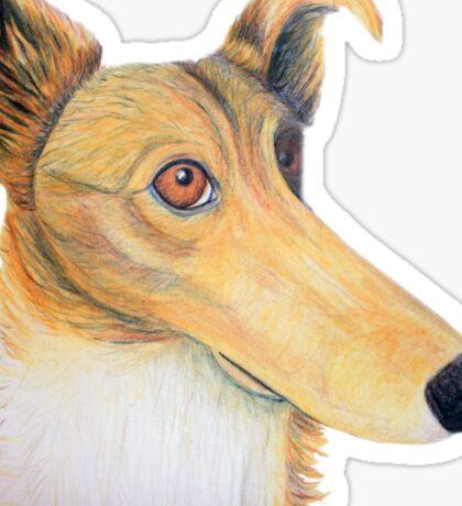 Rough collie quirky portrait Sticker