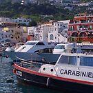 Harbor of Capri by roger smith