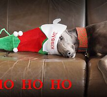 Ho Ho Ho by GreyhoundSN