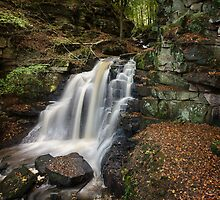 Autumn Waterfall by Chris McIlreavy