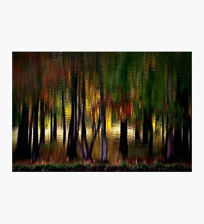 Nature With a Paintbrush Speaks Photographic Print