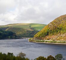 Elan valley reservoir  by Steve Shand