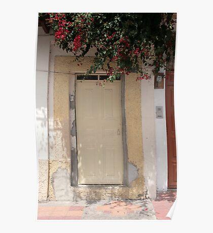 Wooden Door With Flowers Poster