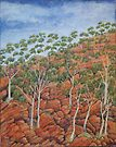 Northern Territory imaginings by Lynne Kells (earthangel)