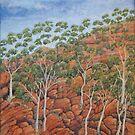 Northern Territory imaginings by Lynne Kells (earthangel)