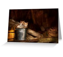 Animal - Cat - Bucket of fun  Greeting Card